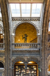 Alfred Russell Wallace enjoying the warm and dry, Natural History Museum, London, 05/12/2017