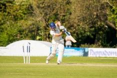 Wicket!, WsM CC vs Temple Cloud CC, WsM, 17/06/2017