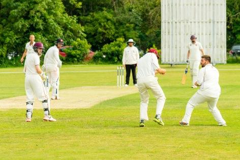 Wicket!, WsM CC vs Wembdon CC, WsM, 08/07/2017
