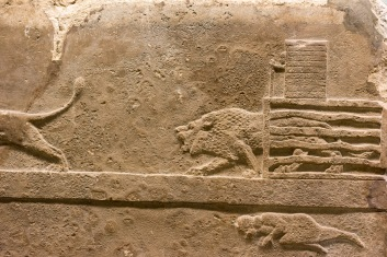 Ashurbanipal displaying his sporting prowess, The British Museum, London, 05/01/2018