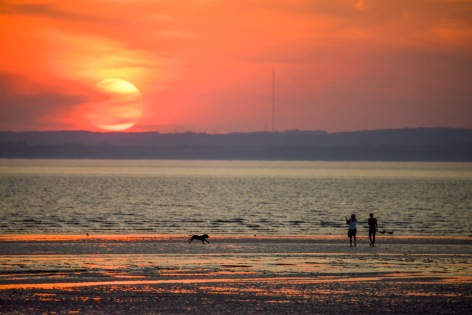 Dog Walking at Sunset, Weston Bay, Weston-super-Mare, 24/07/2014