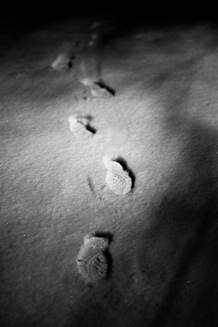 2018-02-28 - Snowy Epsom-001