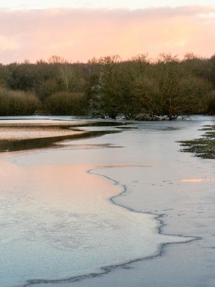 Great Stew Pond, Epsom Common, Epsom, 28/02/2018