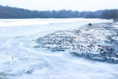 A Wintry Scene, Great Stew Pond, Epsom Common, Epsom, 01/03/2018