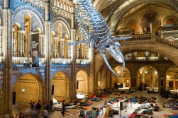We did make it back in time for the harpist though, Dinosnores, Natural History Museum, 23/03/2018