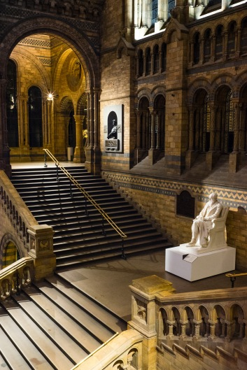 Not a soul to be seen, Dinosnores, Natural History Museum, 23/03/2018